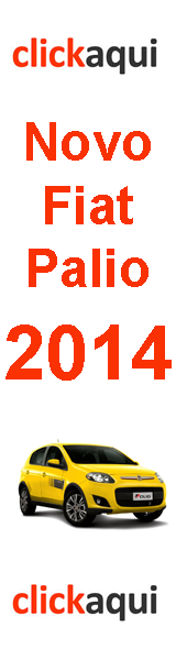 Novo Palio 214